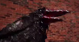 A crow covered in blood