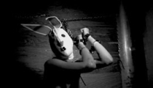 Woman in a bunny mask all tied up